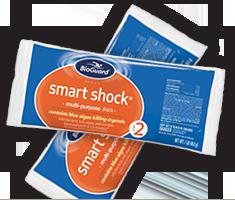 smart-shock